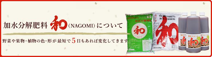 加水分解肥料和(NAGOMI)について。野菜や果物・植物の色・形が最短で5日もあれば変化してきます。