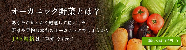 オーガニック野菜とは?あなたがせっかく厳選して購入した野菜や果物は本当のオーガニックでしょうか?JAS規格はご存知ですか?